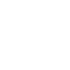 Natiomal Auto Auction Association Member
