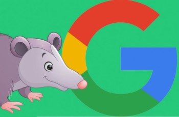 The Google Possum: What Does It Mean for Your Dealer Website?
